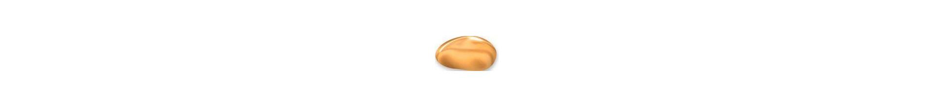 Dourada